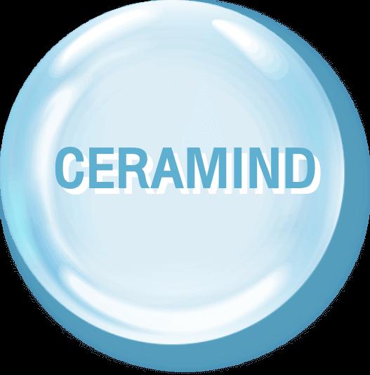 CERAMIND