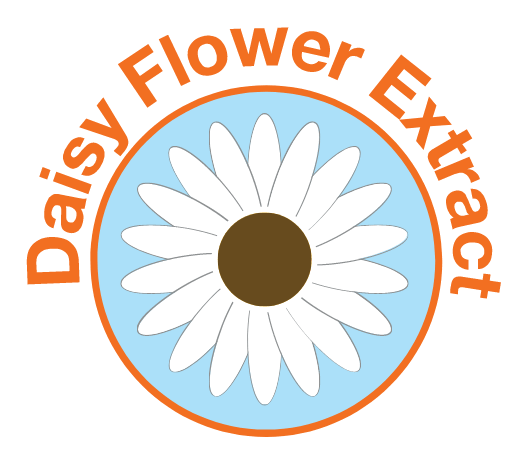 Daisy Flower Extracts