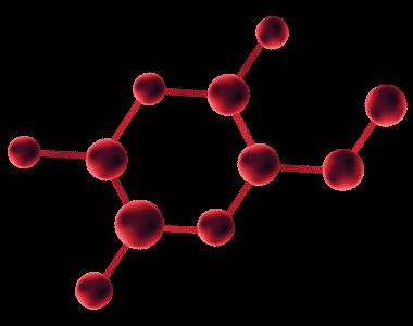 Amino-Peptide (PAL- KTKKS)