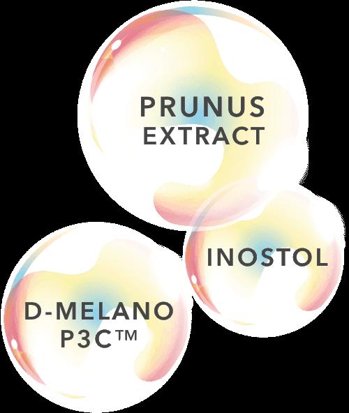 สารสกัดจากพรูนัสจากลูกพรุน (Prunus Extract) , Inostol, D-Melano P3C™