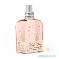 Cherry Blossom : Eau De Toilette