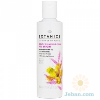 All Bright : Gentle Cleansing Cream