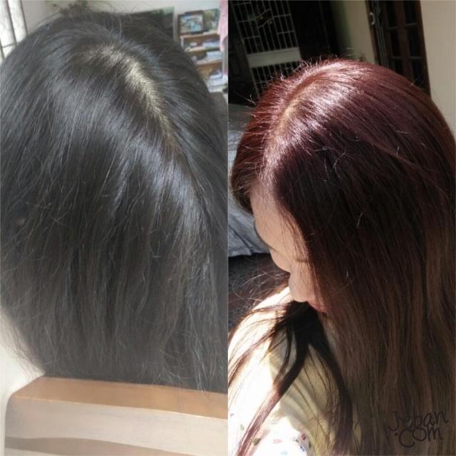 Review Liese Bubble Hair Color